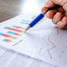 What Are The Best Career Options If You Are A Statistics Graduate?