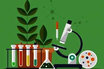 Understanding the Subject Biology